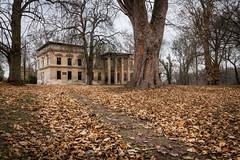 _MG_9737.jpg (qitsuk) Tags: mecklenburgvorpommern germany autumn foliage ruin hausdemmin demmin lostplace