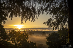 Redmond Sunrise - 1 (BobbyFerkovich) Tags: sonyimages sony rx100 vi redmond washington willows road quadrant business park run golf course sunrise clouds fog morning sun