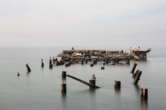 fleming point king tide (eb78) Tags: ca california kingtide eastbay albany flemingpoint pier abandoned decay hightide tidal longexposure bayarea