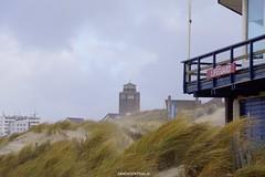 DSC02851 (ZANDVOORTfoto.nl) Tags: zandvoort edwin keur fotografie aan zee strand nederland netherlands kust coast shore beach beachlife strom stormy weather stormyweather wind hardwind sandstorm
