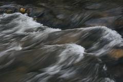Impressions (de.pict) Tags: austin texas creek water river nature canon 6d 24105mm