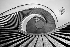 down the spiral (Blende1.8) Tags: stairs spiralstaircase spiral stairway staircase treppe wendeltreppe treppenhaus circularstair circular interior stufe stufen steps step banister treppengeländer lines curves architecture architektur köln cologne koeln makk voigtländer voigtlaender 10mm heliarhyperwide sony alpha ilce7m3 emount wideangle ultraweitwinkel weitwinkel