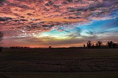 1211-coucher de soleil 159 (sebastien.demotier) Tags: champlieu orrouy picardie france coucher de soleil ciel bleu blue sky field champ