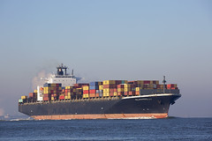 MSC DARDANELLES (angelo vlassenrood) Tags: ship vessel nederland netherlands photo shoot shot photoshot picture westerschelde boot schip canon angelo terneuzen cargo container mscdardanelles