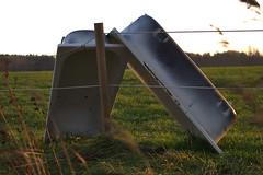 Tub hug (hasor) Tags: tub horse water autumn fall field meadow fence sunset örebro närke sweden karlslund
