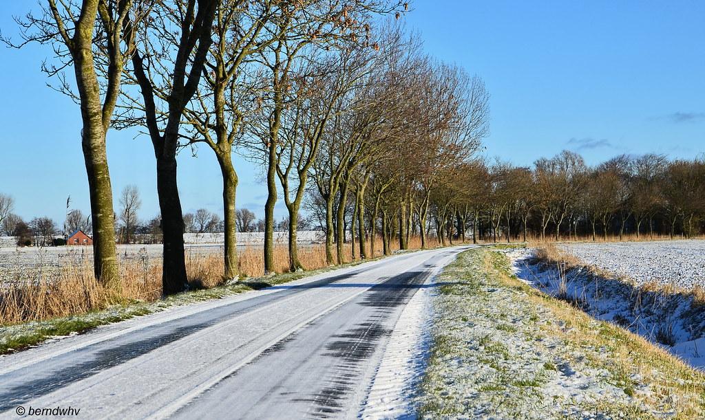 5cf490c4f431f Winter im St. Joostergroden   Landkreis Friesland (berndwhv) Tags   deutschland norddeutschland niedersachsen