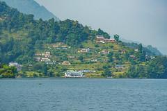 475_Pokhara_12 (andreavarju) Tags: 2018 annapurnasanctuary exploretrip nepal november sony autumn hike hiking mountains nature naturephotography sonyalpha sonyphotography travel travelphotography trekking landscape landscapephotography phewatal lake boats
