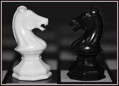Macro Mondays - Balance (zendt66) Tags: zendt66 zendt nikon d7200 chess macromondays balance bw black white