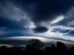 Clouds Talking (Steve Taylor (Photography)) Tags: black blue white newzealand nz southisland canterbury christchurch northnewbrighton trees silhouette shape arch cloud sky