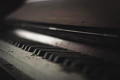 T H I R T E E N (A N T O N Y M E S) Tags: antonymes abandoned interesting derelict explore empty destroyed abandonedchapel derelictbuilding derelictchapel urbex urbanexploration decay decayed broken rust old deserted unloved unused dark creepy decaying canon 70d harmonium piano keyboard