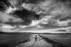 Look for freedom (Saurí) Tags: freedom catalonia opresive opresion paisaje landscape delta ebre ebro