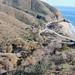 Point Mugu: Sycamore Canyon parking lot