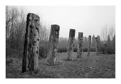 Totems sculptés (DavidB1977) Tags: france îledefrance seineetmarne ferrièresenbrie fujifilm x100f monochrome bw nb taffarette sculpture totem danielstinus
