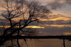 winter sunset (pvh photo) Tags: sunset lake tree silhouette sky
