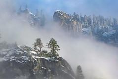 Yosemite - Storm Clearing (niallfritz) Tags: clouds mist trees cloud mountains yosemite sierras cliff ridge snow