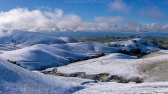 Spring Rolling Hills in Snow (Jaykhuang) Tags: rollinghills eastbay springtime green springgreen snow snowcovered livermore trivalley bayarea jayhuangphotography lunarnewyear chinesenewyear luckysnow