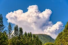 Mister Blue Sky (NguyenMarcus) Tags: worldtracker aasia bluesky clouds vungtau bàrịa–vũngtàu vietnam vn