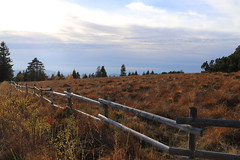 Black Forest in autumn 2018 (1) (mgheiss) Tags: schwarzwald nordschwarzwald northernblackforest blackforest canoneos6d canonef24105 herbst autumn