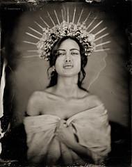The Madonna (Joseph Kayne Photography) Tags: madonna relisious icon wetplate wet platecollodion tintype portrait largeformat blackandwhite portraitphotobraphy