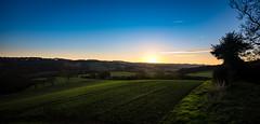 shooting star (Phil-Gregory) Tags: mosborough mossvalley field light sky sunset goldenhour green nikon iamnikon tokina1120mmatx tokina wide wideangle ultrawide plumbley sheffield southyorkshire