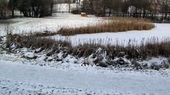 colours of winter (lualba) Tags: schnee winter snow bavaria
