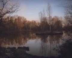 winter mood (hjuengst) Tags: bayern bavaria winter winterbeauty notzingerweiher erding reflection reflektionen spiegelung bäume trees