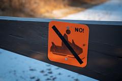 No Snowmobiles (Tony Webster) Tags: minnesota nosnowmobiling saintcroixstatepark stcroixstatepark nosnowmobiles sign signage snow snowmobile snowmobiles snowmobiling statepark winter ogema unitedstates us