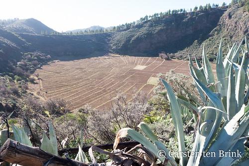 Agriculture in the Caldera de los Marteles