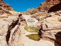 Ernst Tinaja (throgers) Tags: bigbend bigbendnationalpark brewstercounty ernsttinaja nationalpark nationalparkservice nps texas westtexas