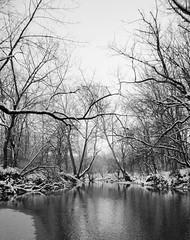 Ice On The Creek (aaron_gould) Tags: creek stream flow ice winter ohio january 2019 monochrome monochromatic bw outside landscape trees blackandwhite nikkor d7000