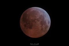 Bloody Moon (DuoClip) Tags: moon bloodmoon night colorful canon canon7d fullmoon astrophotography