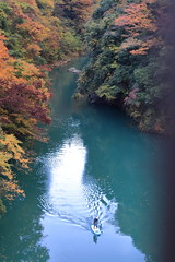 Rafting on Tama River (seiji2012) Tags: 奥多摩 多摩川 数馬狭 紅葉 ボート okutama japan tamariver rafter foliage leaves