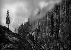 Wall with Trees and Clouds (Rick Exstrom) Tags: rickexstrom yosemite blackandwhite landscape cliffs rocks clouds monochrome