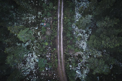 November road (Klas-Herman Lundgren) Tags: dalarna sweden gimmen autumn höst november forest trees skog travel blue sverige drone path road dirtroad väg skogsväg sifferbo se