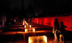 Weihnachtsbeleuchtung im Südgelände (Heidi zu Klampen) Tags: deutschland berlin südgelände natur eisenbahn geschichte weihnachten licht installation park orange menschen nacht