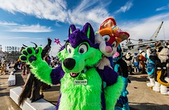 8M5A1067-29 (loboloc0) Tags: suit fur fursuit suiter furry animal costume cosplay space camp party 2018 18 beer people uss hornet aircraft carrier ship