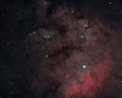 NGC 7822 (jschr338) Tags: ngc 7822 sh2171 cepheus stars nebula space universe astronomy 1600mm zwo at6rc astronomik narrowband astrophotography