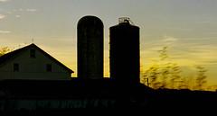 (bluebird87) Tags: barn silo dxo film kodak ektar epson v600 nikon f100 lightroom dusk