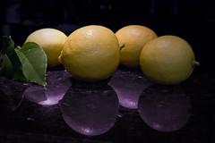 Lemon Harvest (brucetopher) Tags: lemon citrus fruit sour stilllife still life nature natural reflection purple tropical houseplant harvest grow plant peel skin texture light fresh local lemontree