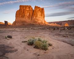 Desert Organ, Arches National Park (Joseafc) Tags: utah archesnationalpark moab desert landscapephotography landscapes redrocks sonya6300 national outside nature light naturephotography natur