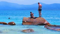 on the rocks - Fitzroy Island, Queensland Australia (jeffglobalwanderer) Tags: boulder rock queensland fitzroyisland greatbarrierreefisland water sea ocean australia beach island