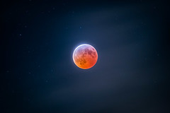A Total Eclipse of The Moon (aaronncollier) Tags: moon lunar eclipse total supermoon january wolf stars sky night red blood shadow dark california astrophotography astronomy nikon d750 500mm ioptron skytracker
