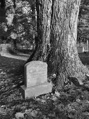 "Kitty Jones' epitath: ""She hath done what she could"" (davekrovetz) Tags: iphone cemetery monochrome charlottesville epitaph gravestone"