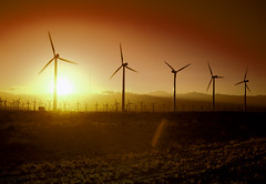 California Wind Turbines at Sunset. Original image from Carol M. Highsmith's America, Library of Congress collection. Digitally enhanced by rawpixel. (Free Public Domain Illustrations by rawpixel) Tags: otherkeywords tags agriculture amazing america american autumn beautiful brilliantly california carolhighsmith carolmhighsmith cc0 champaign country countryside crop field harvest landscape missouri name natural nature nobody outside plant power powergeneration powersystem renewableenergy rural season shine sky solar solarpanel sunshine sunset tree turbines unitedstates unitedstatesofamerica us usa wind windpower windturbine windturbines windmill wonderland yellow