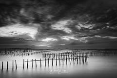 (風傳影像) Tags: chigu tainan tainancity taiwan cloud cloudy danieldawn dusk lagoon longexposure sun sundown sunlight sunrisedawn sunset