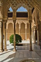 DSC04392.jpeg - Granada