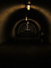 Žižkovský Tunel, Prague, 2018-08-13, 17-21-28 (tributory) Tags: prague praha civilengineering zizkov tunnel bricks ussr state vitkov hill lighting stripes caterpillar abstract pattern repetition yellow pedestrian
