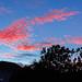 Pintura del Amanecer