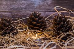 pinecone (hakan_erkmen) Tags: pinecone pine cone canon eos candle tealight