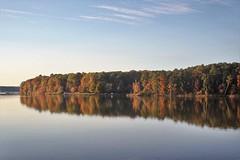 Basking in Autumn's sunset 🍁 (Sam0hsong) Tags: autumn northcarolina lakecrabtree autumnleaves